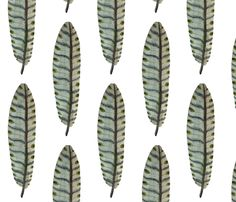 Feathers  fabric by gollybard on Spoonflower - custom fabric