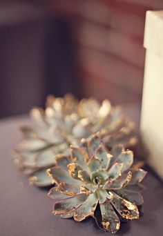 I love this soooo much!!! Can use in centerpieces, bouquets. Love that you can see the color of the succulent but , but also the gold is so unexpected and gorgeous!!! Would look great on the bridesmaids succulents / airplanes large single bouquets ... Ugh he need this in my bouquet !!!