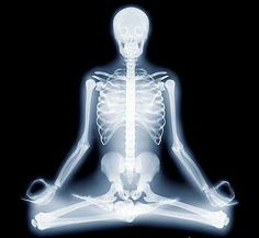 X-ray yoga. I think it's from a photographer named Hugh Turvey. Really cool pix.