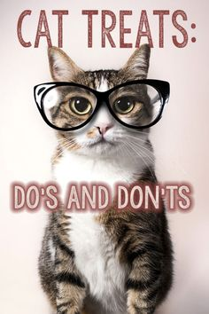 Cat Treats: Do's and Don'ts   eBay