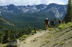 Mountain biking in Mammoth Lakes