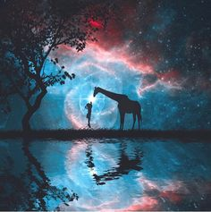 Beautiful giraffe pic