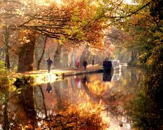 Beautiful autumnal scenery on the Shropshire Union Canal.