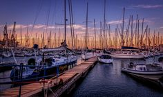 Table Bay Harbour