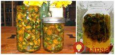 Jedným z dôvodov, prečo mám rád jar , sú tieto jasné púpavové kvety, ktoré v zelenej tráve svietia ako slniečka. Nie je to však len krása, ktorá robí z púpavy jeden z najobľúbenejších symbolov jari - ide najmä o jej liečivé účinky! Voss Bottle, Water Bottle, Organic Beauty, Korn, Detox, Mason Jars, Food And Drink, Herbs, Drinks