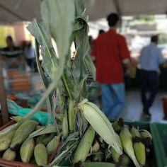 Mercado campesino, este y todos los miercoles en Mercar  Caney. De las mejores fincas de Colombia directamente a tu mesa. Asparagus, Vegetables, Colombia, Get Well Soon, Studs, Vegetable Recipes, Veggies