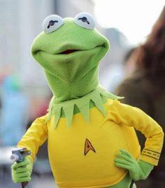 Captain Kermit Of The U.S.S. Enterprise!