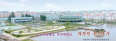 장천남새전문협동농장