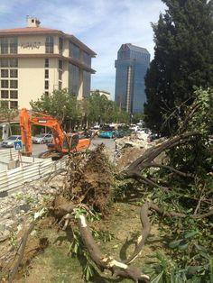 #direngeziparkı #occupygezi