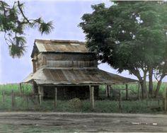 Looks like my Grandparent's tobacco barn in Hazlehurst, GA