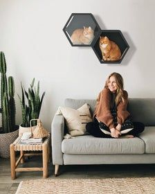 Cat Furniture Set of Wall Shelves for Cats Bed for Pets Cat Lover Gift Wall Decor Cat House on Wall - Neue Technologie Cat Wall Furniture, Furniture Sets, Modern Cat Furniture, Hiding Cat Litter Box, Cat Steps, Cat Shelves, Cat Room, Cat Tree, Gifts For Pet Lovers