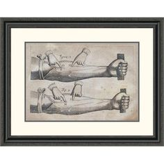 """Global Gallery 'Discovery of the Circulation of Blood' by William Harvey Framed Painting Print Size: 25.2"""" H x 32"""" W x 1.5"""" D"""