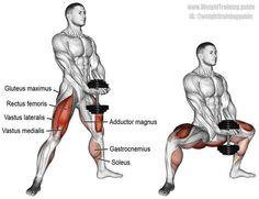 MUSCLE GAINS: Dumbbell sumo squat (aka dumbbell plié squat). A c...