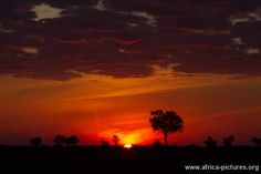 Gorgeous sunsets over South Luangwa