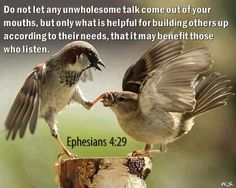 Ephesians 4:29 - I love the picture of the sparrow holding the other sparrows beak shut.