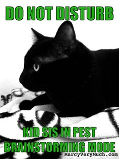 Marcy Very Much  www.marcyverymuch.com mostly me, by penelope/april fools day  #cats, #catmeme, #blackcats, #aprilfoolsday