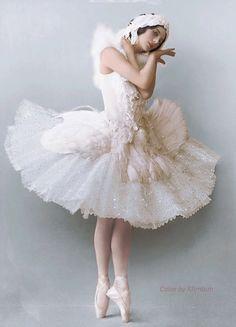 Anna Pavlova – The DyingSwan Anna Pavlova, Ballerina Costume, Ballet Costumes, Dance Costumes, Swan Lake Costumes, Baby Costumes, Ballet Art, Ballet Dancers, Ballerinas