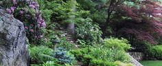 Green Velvet Gardens, Holliston, MA