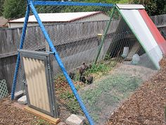 Awesome chook pen found on My Two Hands Blog Chicken Coop Chook Shed DIY