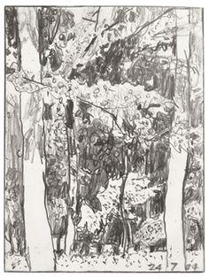 Tom Fairs untitled pencil on paper x in 14 x cm Landscape Sketch, Landscape Drawings, Landscape Art, Landscape Paintings, Art Drawings, Gothic Wallpaper, Garden Drawing, Artist Sketchbook, Post Impressionism