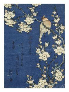 Bouvreuil et cerisier-pleureur Giclée-Druck von Katsushika Hokusai - bei AllPosters.ch
