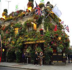 The Churchill Arms pub Londres Cara Delevingne