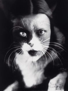 Io + gatto (Cat + I) by Wanda Wulz, 1932. See the Exposure column at Design Observer. http://designobserver.com/feature/exposure-cat-and-i-by-wanda-wulz/38801/