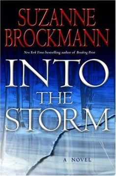 Suzanne Brockman, Into the Storm