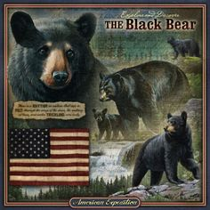 The Wildlife Series 3-D Embossed Tin Signs combine rustic textures with vibrant illustrations and graphics to create a dynamic and patriotic celebration of America's wildlife. Each sign has a deep-rolled edge and detailed embossing beneath the wildlife images that really brings the signs to life! There are holes in each corner for hanging.