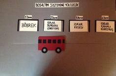 Fen teknoloji dersi sunumumda kullandigim bosaltim sistemi yolculugu