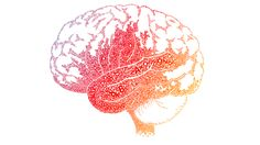 Blog Mind Shift How we learn