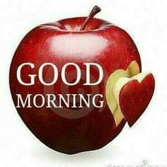 Good Morning Have a Nice Day Pics : Good Morning Photos, Good Morning Images, Good Morning Quotes, Good Morning Wishes Wallpaper for whatsa. Good Morning My Friend, Morning Morning, Good Morning Texts, Good Morning Sunshine, Good Morning Picture, Good Morning Flowers, Good Morning Greetings, Good Morning Good Night, Morning Pictures
