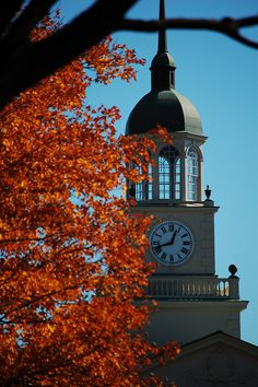 41 Best Bucknell images