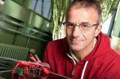 El biólogo, uno de los mayores expertos del mundo en estos insectos, fue el primero en detectar el carácter genético de la sociabilidad de las hormigas