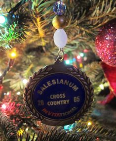 For our sports tree! I can take all of the kids medals and make them into ornaments. This is smart!