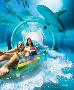 6 Scary WATER SLIDES passing among SHARKS!  These slides are located in the Golden Nugget hotel in Las Vegas and Atlantis in Dubai.