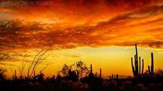 AZ Sunset East Valley  by Saija