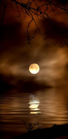New Photography Night People Full Moon Ideas Moon Pictures, Nature Pictures, Pretty Pictures, Full Moon Photos, Moon Pics, Moon Images, Beautiful Moon, Beautiful World, Beautiful Images
