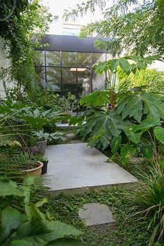 Small Tropical Gardens, Small City Garden, Small Gardens, Outdoor Gardens, Garden Modern, Vertical Gardens, Contemporary Garden, Magic Garden, Dream Garden