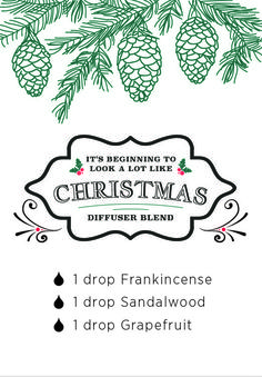 It's Beginning to Look a Lot Like Christmas diffuser blend. Diffuse in the home for a warm and inviting Christmas scent.