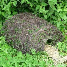 Give hedgehogs a home with a hogitat hedgehog shelter #homesfornature
