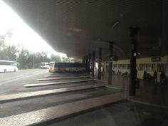 La estación de autobuses de Elche es uno de los lugares más transitados durante estos los días de la fiesta en la ciudad. Es uno de los medios de transporte que eligen los visitantes y turistas que acuden a Elche para disfrutar de la representación de El Misterio.