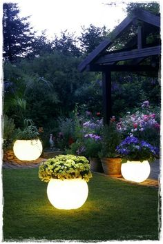Light Up Plant Potters