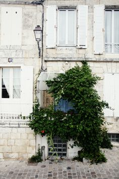 there is a door there, behind the greenery ~ la rochelle, france Exterior Design, Interior And Exterior, The Places Youll Go, Places To Go, Belle France, Poitou Charentes, France Photography, Grades, Belle Villa