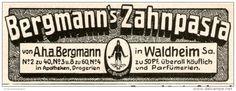 Original-Werbung/ Anzeige 1905 - BERGMANN'S ZAHNPASTA WALDHEIM - ca. 80 x 30 mm