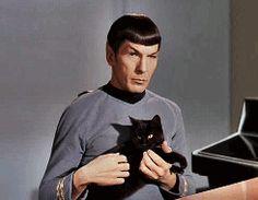 Live Long and Prosper Little Kitty! - a Star Trek kitty GIF.