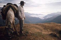 Somewhere between Patagonia & Alaska  Photograph: Vladimir Fissenko  Documentary trailer - http://1895films.com/project/20000-miles-on-a-horse/
