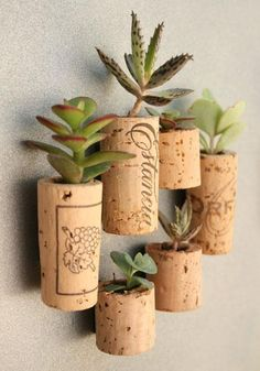 After you pop that cork, do a little recycling!