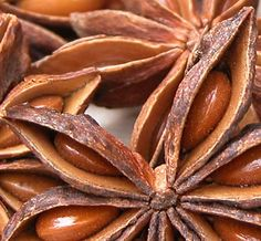 #StarAnise essential oil has a charming, #sweet, spicy and liquorice-like #aroma. It is produced from the seeds of an unusual, almost star shaped fruit which grows on a small oriental tree.  http://www.enaissance.co.uk/star-anise