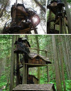Já pensou em fazer uma casa na árvore ?